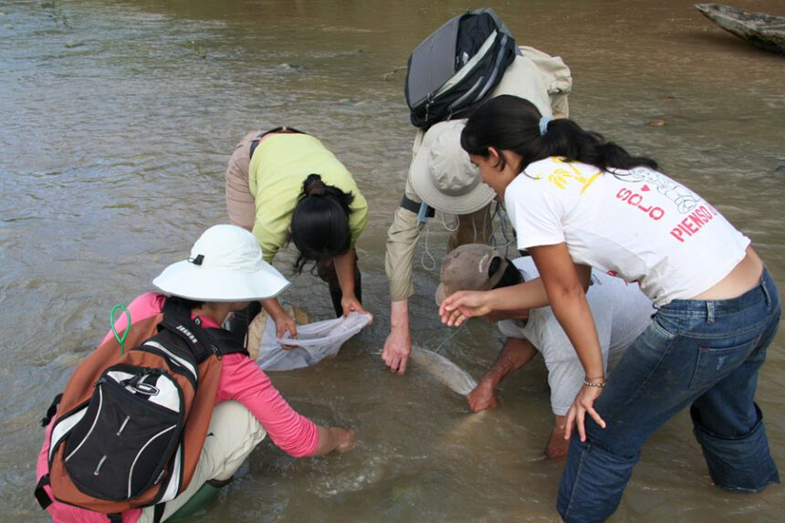 Looking for knifefish; on the right Prof. Rüdiger Krahe, McGill University