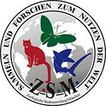 Zoologische Staatssammlung München – ZSM