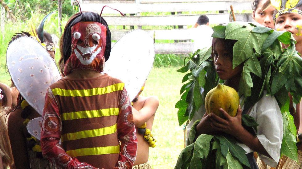 ... und zu den Bäumen zeigt, auf denen beide leben (Papaya-Kostüm)