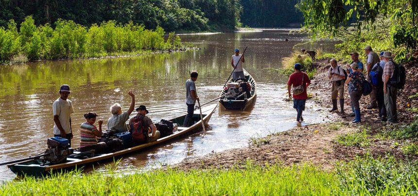 Panguana's boat landing Photograph: Konrad Wothe
