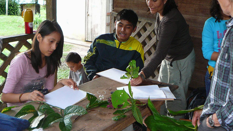 Die Schüler studieren und zeichnen Pflanzen