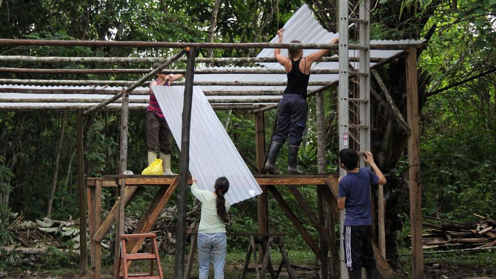 Aufbau der Konstruktion mit transparenten Dachplatten