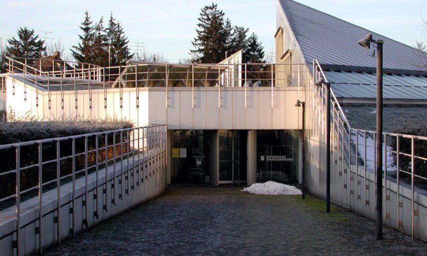 A modern workplace: the Zoologische Staatssammlung München